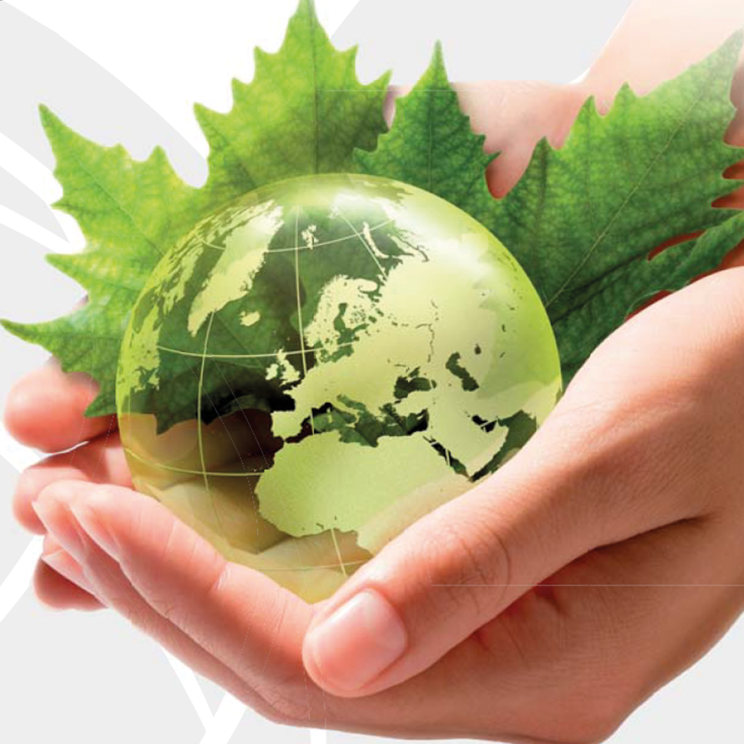 Grüne Erde in Händen